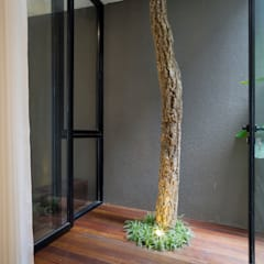 Giardino Zen in stile  di Simple Projects Architecture