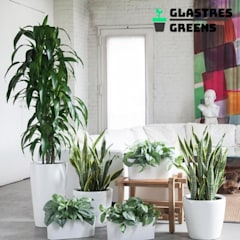 Glastres Greens: asian Garden by Glastres Greens