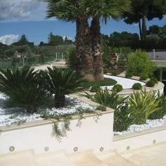 Jardines en la fachada de estilo  por Arch. Giuseppe Barone _ Studio di Architettura & Tutela del Paesaggio