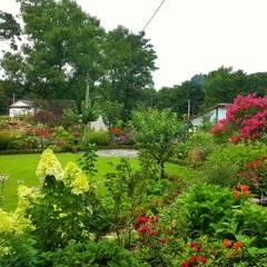 강화 해오름 힐링센터: 아이디얼가든 (IDEALGARDEN)의  정원
