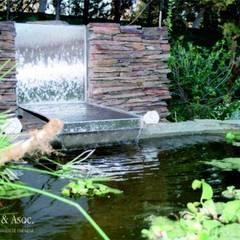 Garden Pond by Aida Tropeano & Asoc.