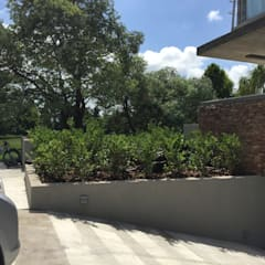 jardin Newman-Bs As- Argentina: Jardines de estilo minimalista por Ib - Paisajista