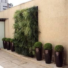 Jardim Vertical: Terraços  por Amaria Gonçalves - Design Paisagismo