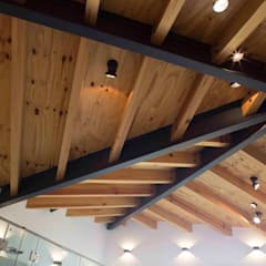 Eduardo Gutiérrez Taller de Arquitecturaが手掛けた片流れ屋根