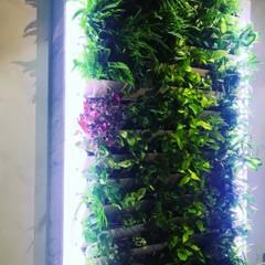 Подсветка зеленой стены: Стены в . Автор – Design Studio HOTCHIN