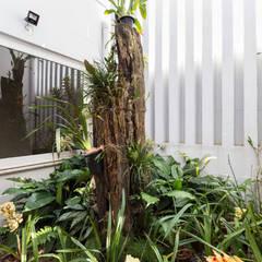 SDP00 | Lavabo e Jardim de Inverno Jardins de inverno rústicos por Kali Arquitetura Rústico