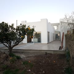Renovaçao: Jardin avant de style  par Martin Schiller Design Studio