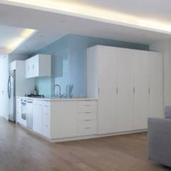 Departamento Condesa / Remodelación : Muebles de cocinas de estilo  por AWA arquitectos