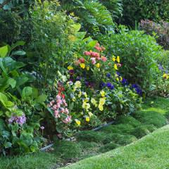 Jardín Mariana: Jardines de estilo clásico por Mexikan Curious