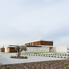 Marta House  - Architecture:  Risco Singular-Arquitectura Lda  Arqº. Paulo Costa e Arqª. Sónia Abreu: Jardins  por Risco Singular - Arquitectura Lda