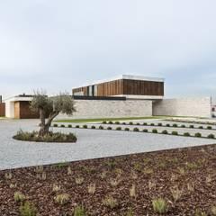 Zen garden by Risco Singular - Arquitectura Lda