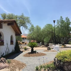Jardín Matilda: Jardines de estilo  por Mexikan Curious