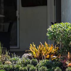 Jardín Alix: Jardines de estilo clásico por Mexikan Curious
