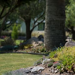 Jardín Irais: Jardines de estilo  por MEXIKAN CURIOUS