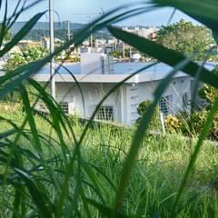 北側外観: 株式会社青空設計が手掛けた一戸建て住宅です。