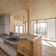 Y-house・R 友部: m・style 一級建築士事務所が手掛けたシステムキッチンです。
