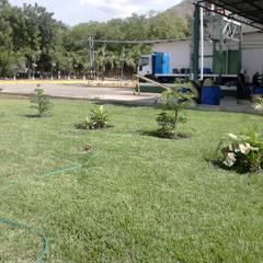 Garten von Vida Verde