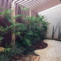 Ja nesta foto a utilização da Chamaedorea microspadix para o fechamento da parede e como forração a utilização de Ophiopogan jaburam (liriope)  e Ophiopogan japonicus (grama preta), que dá o contraste com a mancha de pedrisco palha.: Jardins de inverno  por Luzia Benites - Arquiteta Paisagista