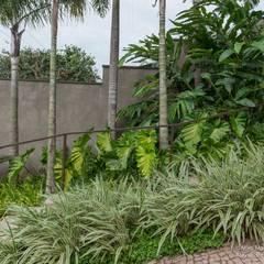 Jardines en la fachada de estilo  por alexandre galhego paisagismo,