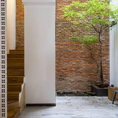 Khoảng thông tầng, giếng trời, cây xanh mang đến điểm nhấn cho ngôi nhà ống.:  Hành lang by Công ty TNHH Thiết Kế Xây Dựng Song Phát