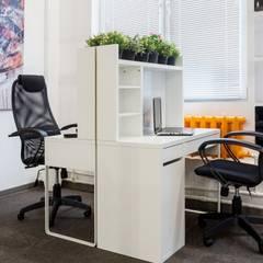 Офис: Рабочие кабинеты в . Автор –  Евгения Млынчик