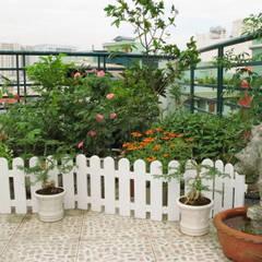 Varandas, marquises e terraços asiáticos por Công ty TNHH TK XD Song Phát Asiático Cobre/Bronze/Latão