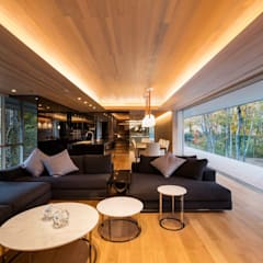 اتاق نشیمن by Mアーキテクツ 高級邸宅 豪邸 注文住宅 別荘建築 LUXURY HOUSES   M-architects
