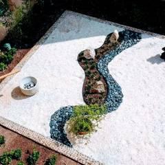 حديقة Zen تنفيذ David Araiza Pérez DAP Diseño,  Arquitectura  y Paisaje, أسيوي