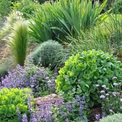 Jardines con piedras de estilo  por  Sophie Durin | Empreinte Paysagère