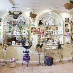 Дом цветочной моды. : Офисы и магазины в . Автор – Дизайн-студия интерьера и ландшафта 'Деметра'
