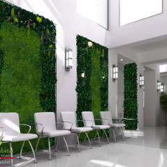 PARETI VERDI SENZA CURA: Studio in stile  di Green Habitat s.r.l.