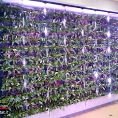GIARDINO VERTICALE IN COMPLETA ASSENZA LUCE: Complessi per uffici in stile  di Green Habitat s.r.l.