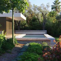 le pool et la grande piscine: Piscines privées de style  par  MMXI architecture