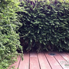 ANGOLO VERDE VERTICALE: Terrazza in stile  di Green Habitat s.r.l.