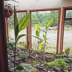 Diseño de Jardín interior de casa en Rio Claro: Jardines de invierno de estilo  por casa rural - Arquitectos en Coyhaique