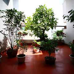 Ngôi Nhà 4 Tầng 45m2 Thông Thoáng Nhờ Thiết Kế Giếng Trời Thông Minh:  Nhà vườn by Công ty TNHH Xây Dựng TM – DV Song Phát