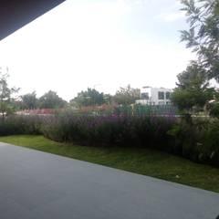 Jardín  posterior: Jardines de estilo mediterraneo por Verde Lavanda