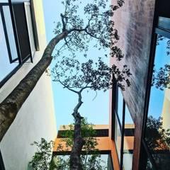 Patio interior: Jardines en la fachada de estilo  por Verde Lavanda