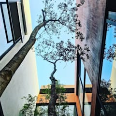 CASA  SENDERO: Jardines en la fachada de estilo  por Verde Lavanda