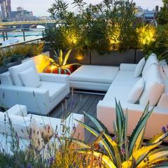 Roof terrace planting design ideas:  Terrace by MyLandscapes Garden Design