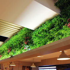 Artificial Plants Wall For Interior Storefront Landscape:  Offices & stores by Sunwing Industrial Co., Ltd.
