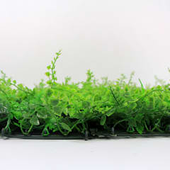 SUNWING Artificial Green Wall Panel G0602A038 For Frontstore Decor:  Offices & stores by Sunwing Industrial Co., Ltd.