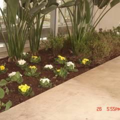Prédio em Matosinhos: Jardins  por Viveiros da Boa Nova, Lda
