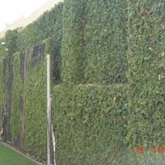Walls by Viveiros da Boa Nova, Lda