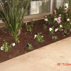 Prédio: Jardins  por Viveiros da Boa Nova, Lda