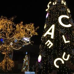 크리스마스 트리 시공: Lightners의  바닥