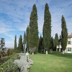 la vegetazione della scarpata : Giardino anteriore in stile  di Morelli & Ruggeri Architetti