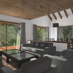 CASA M-M: Livings de estilo  por Pro Aus Arquitectos
