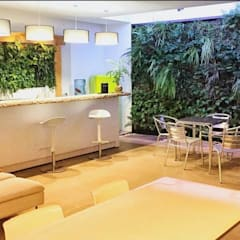 Nuevo espacio para profesionales: Espacios comerciales de estilo  de Verdtical Ecosistemas