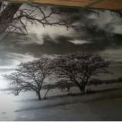 B & W Landscape photography printed onto wallpaper:  Study/office by Custom Art Framing (Pty) ltd
